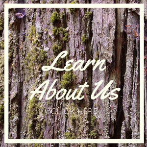 click here to learn more about story roots productions